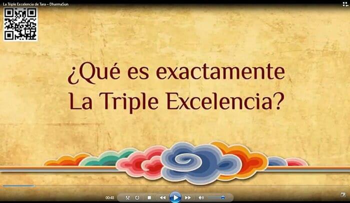 La triple Excel·lència de Tara – Donació