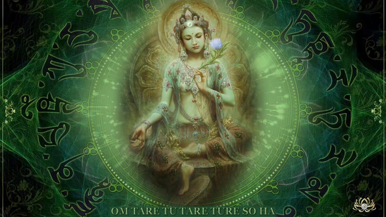 Este 28 de Junio es el día de Tara