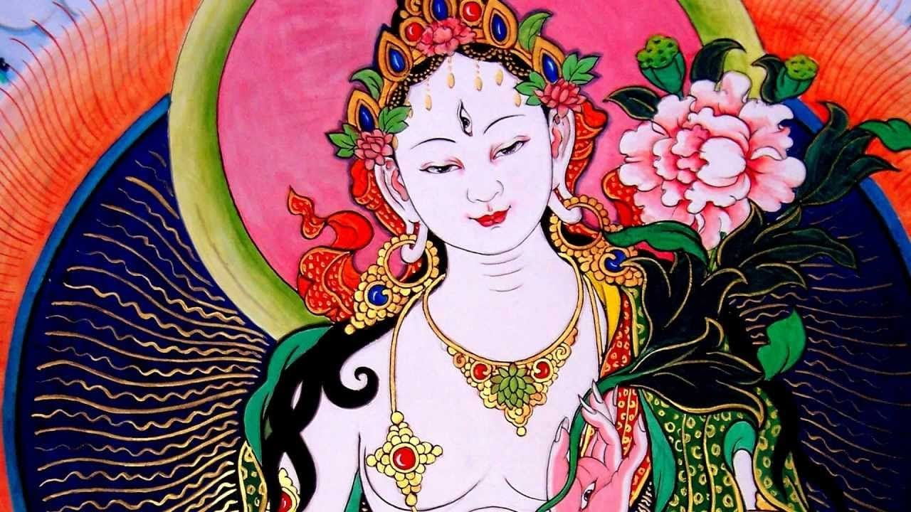 Aquest dissabte 20 de febrer és el dia de Tara