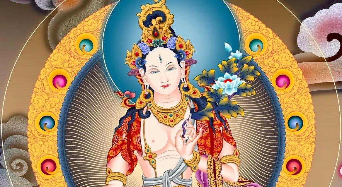 Este jueves 20 de mayo es el día de Tara